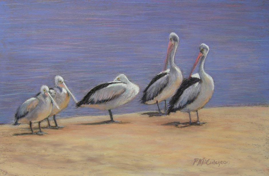 Pelicans At Rest