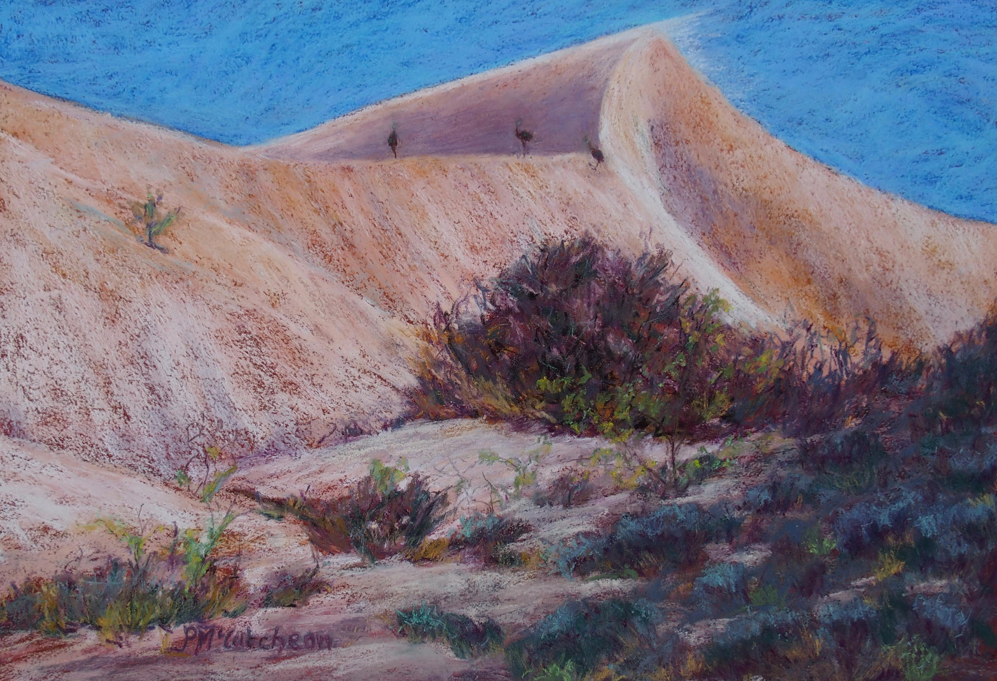 Emus cross Mungo Mungo Sand dunes