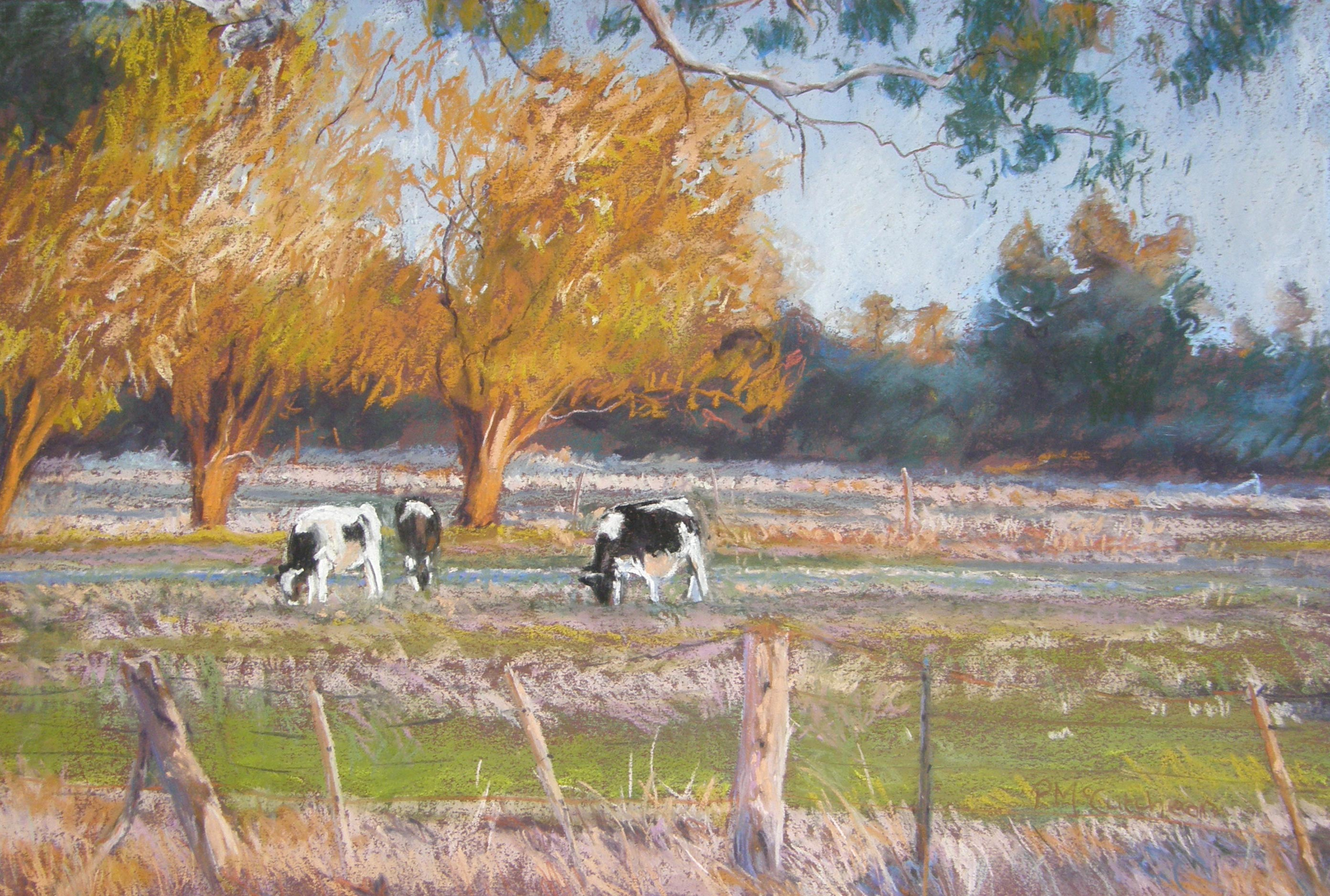 Evening grazing